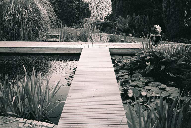 garden design water garden1